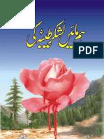 Hum Maain Lashker Taiba Ki Urdu Book 3