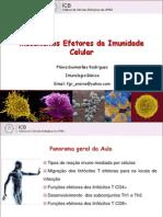 Aula 17. Mecanismos Efetores Da Imunidade Celular