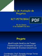 Apresentação Fernando Torres_dezembro 2011