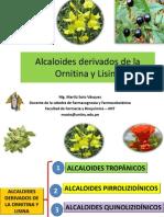 Alcaloides derivados de la ornitina y lisina por Q.F. Marilú Roxana Soto Vásquez