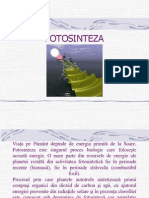 Curs Fotosinteza