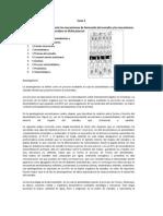 Biomineralizacion Oral