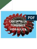 Cavitatia La Turbinele Hidraulice