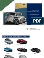 Peugeot Professional 2011