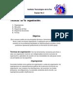 TECNICAS DE ORGANIZACIÓN ESCRITO