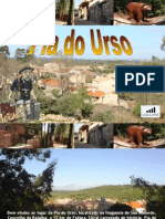 PIA DO URSO