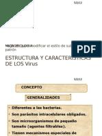 Estructura y Caracteristicas de Los Virrs