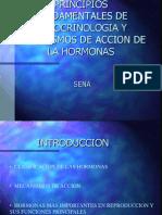 PRESENTACION ENDOCRINOLOGIA