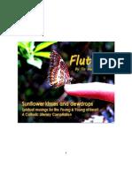 Flutter Preview