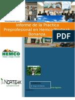 Informe de La Practica Preprofesional Hemco