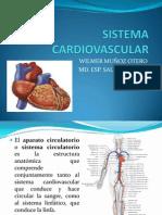 Sistema Cardiovascular.