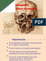 ESPACIOS_ANATOMICOS_BUCOFACIALES