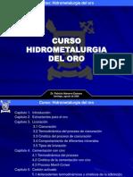Hidrometalurgia Del Oro (Dr. Patricio Navarro)