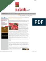 L'Italiano Consuma 87 Kg Di Carne - Italia a Tavola