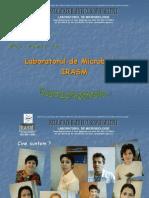 RT_PCR
