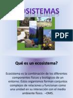 Eco PWP