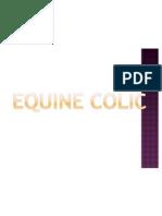 Equine Colic Lecture 1