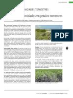 vegetacion yucatan