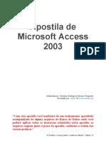 Apostila Completa de Access 2007
