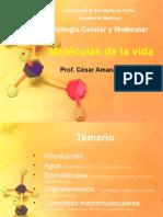 Moléculas de La Vida Teoria 2008