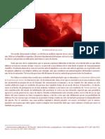 Aborto(Sebastian Pierpauli)