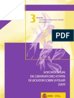II+Informe+Observatorio+de+Violencia+Sobre+La+Mujer