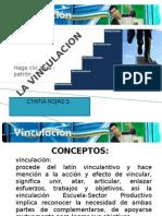 La Vinculacion[1]