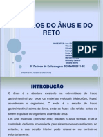 Disturbios Do Anus e Reto Quase Pronto!