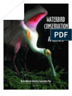 Waterbird Conservation for the Americas