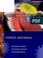 Musculos Parede Abdominal e Canal Inguinal