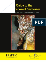 Seahorse ID Guide 2004