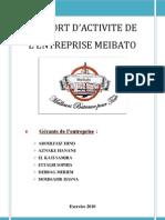 Rapport Fianl Meibato