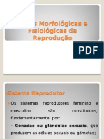 Bases Morfológicas e Fisiológicas da Reprodução