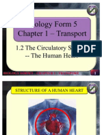 Biology Form 5 - The Human Heart