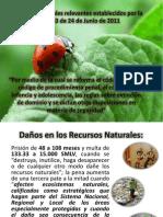 Ley de Conservacion Del Ambiente