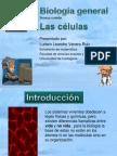 Biologia Genera Celulas (1)