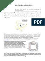 Ficha de Fisiostetica (Guardado Automaticamente