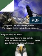 ElAguila