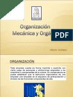 Organica Versus Mecanica