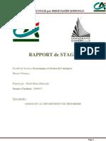 rapport de stage crédit agricole