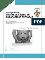 CAUSAS DE ABORTO EN EMBARAZADAS QUEMADAS