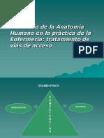 El Estudio de La Anatomia Humana en La Practica de La Enfermeria Tratamiento de Vias de Acceso Prof Eduardo Huerta