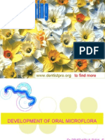Development of Oral Micro Flora