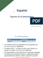 Determinativos español