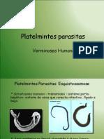 3-platelmintesparasitas3m-100506072959-phpapp02
