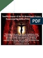 Twelfth Outline of the KLI Brave Heart Project 112111
