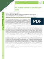O Papel de ABAP1 No to Reprodutivo Em