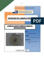 11_-_Informe-9_Microb_AGENTES-QUIMICOS
