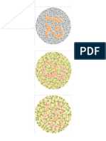 Ishihara Color Blindness Test Plate 1