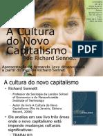 A Cultura Do Novo Capitalismo 1213324234718790 9